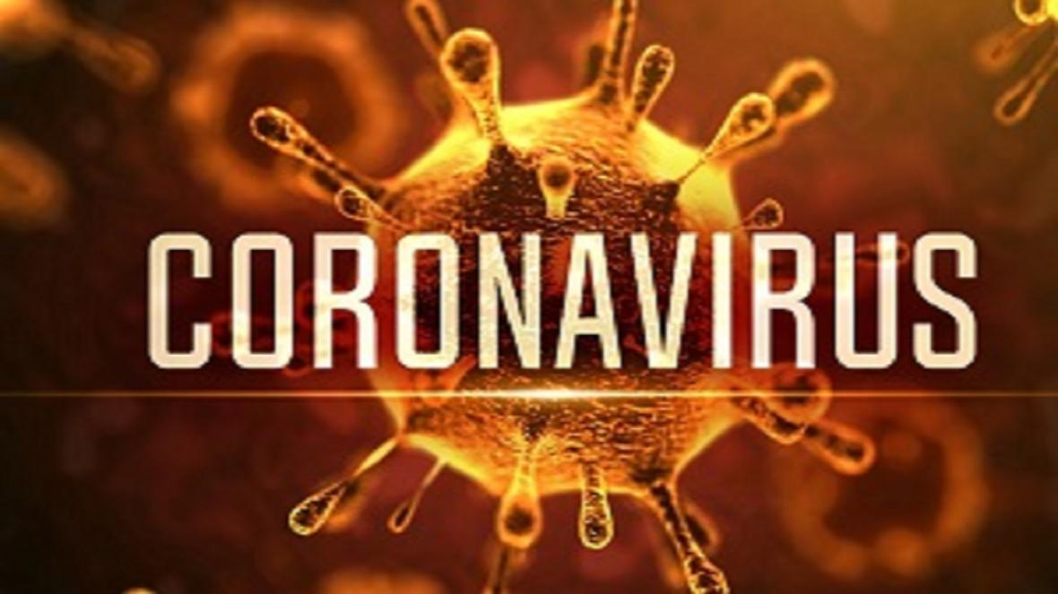 بهترین راه کنترل ویروس کرونا ماندن در خانه است