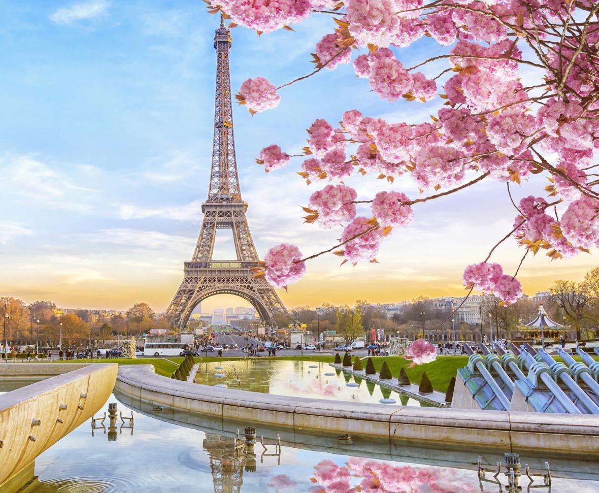 بهترین دانشگاه های پاریس