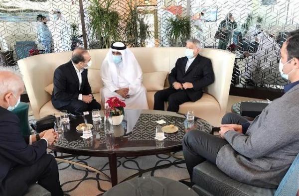 خبرنگاران صالحی امیری: کاراته را به المپیک بازگردانید