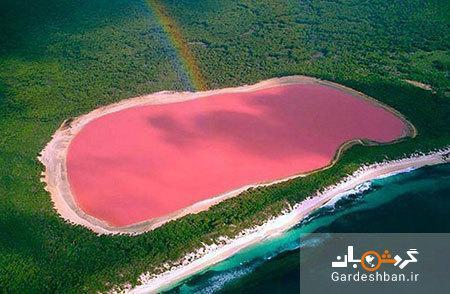 دریاچه هیلیر؛ دریاچه ای منحصر به فرد به رنگ صورتی، عکس