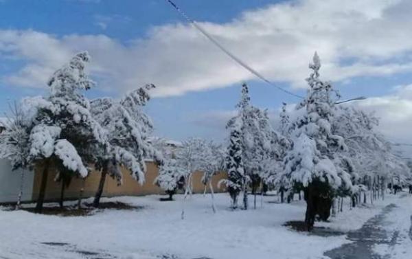سرمای زیر صفر و یخ بندان در 25 استان خبرنگاران